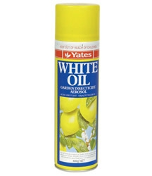 Yates White Oil Insecticide Aerosol